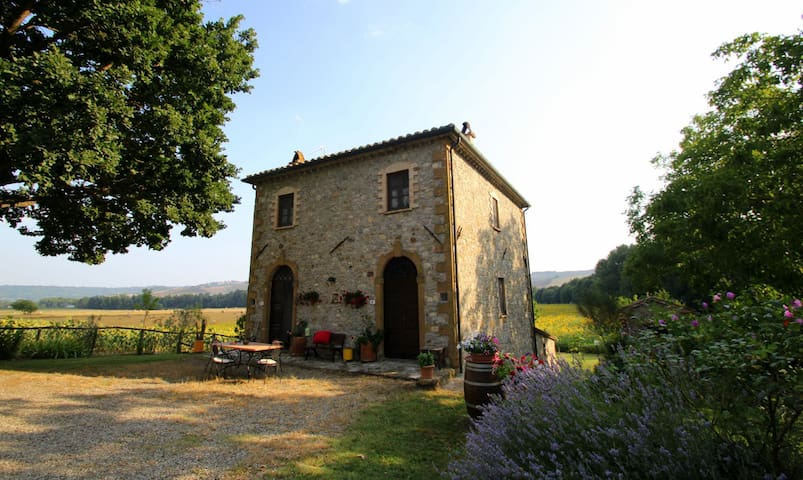 Agriturismo Le Spighe 2 cottages BB - Proceno - Penzion (B&B)