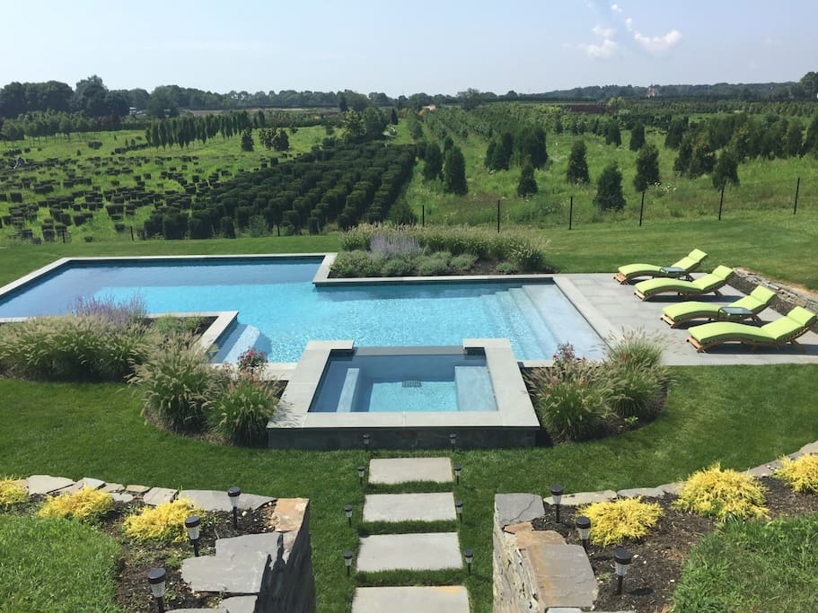 Gorgeous heated saltwater pool and spa designed by awarding winning Patrick's Pools