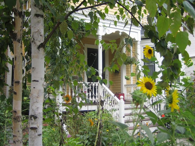 Charming Apartment, Jamaica Plain - Boston - Bed & Breakfast