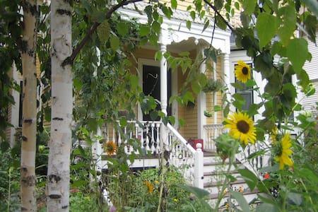 Charming Apartment, Jamaica Plain - Boston - Bed & Breakfast