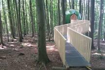 Deutschlands erste Baumhauskugel!