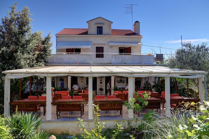 Apartments & rooms Pansion Fregadon - Silba - Bed & Breakfast