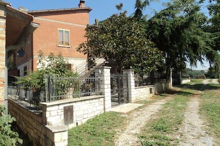 """Villetta """"Casa Luisa"""" linea WI FI - San Giovanni D'asso"""