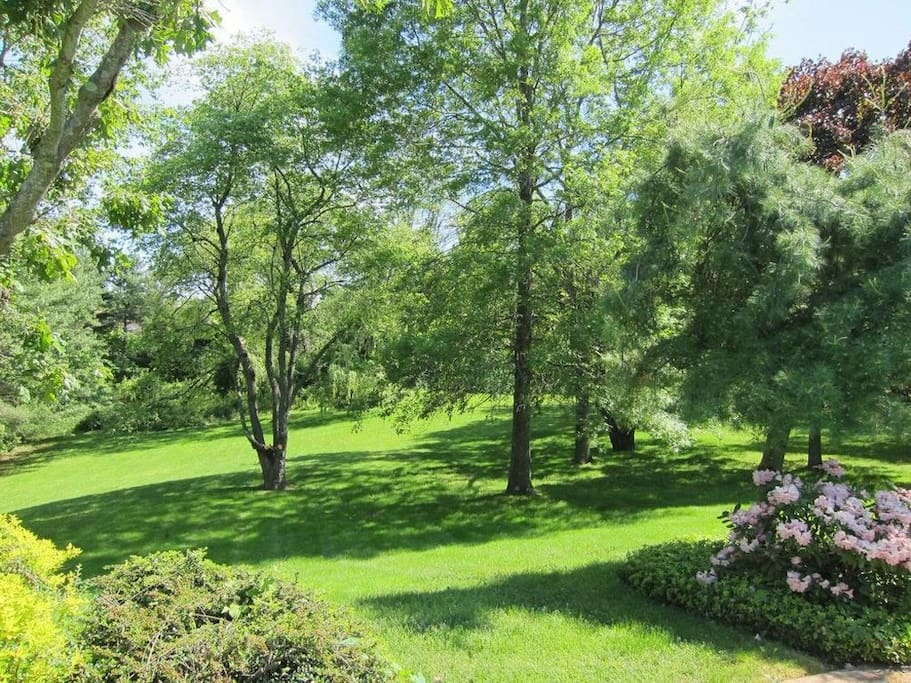 2 Acre Garden with Gorgeous Trees & Beautiful Landscaping
