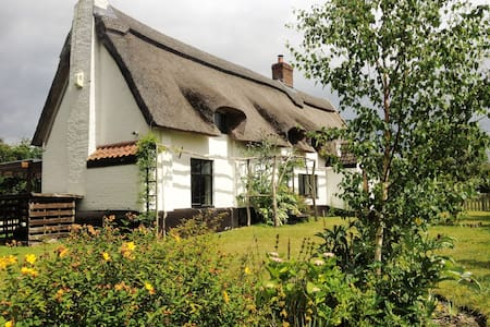 Broad Cottage  - Norfolk Broads - Hoveton