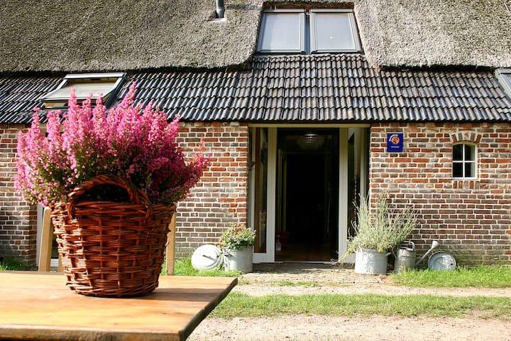 Voor een langer (zakelijk) verblijf - Annen - Apartment