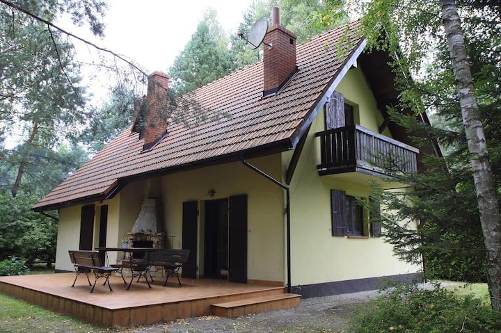 Dom pod lasem z sauną
