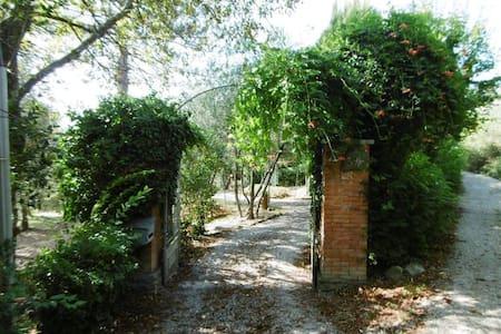 Hillside Olive Garden Tuscany Villa - Puglia - บ้าน