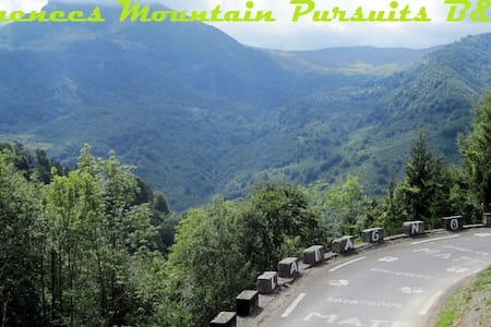 Pyrenees Mountain Pursuits B&B - Arudy