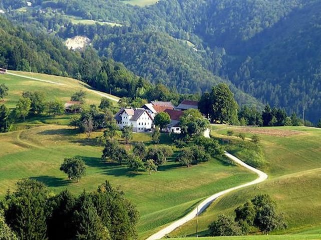 TURIST FARM LJUBICA, AMAZING NATURA - Vinharje - Bed & Breakfast