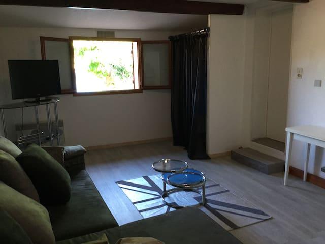 Studio 25m2 avec jardin - Lédat - Apartment