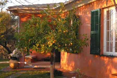 Villa con giardino - Bonassola - Vila