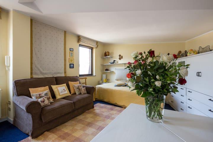 Nido panoramico in centro Aosta - Aosta - Condominio