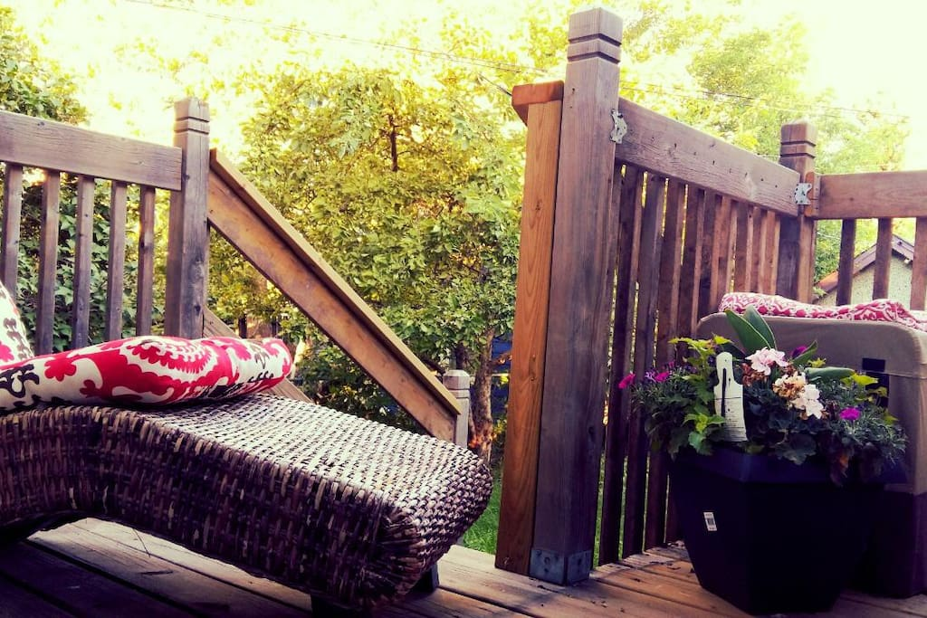 Back deck for lounging and reading.
