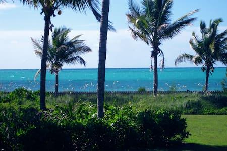 The Blue Inn Villa Freeport Bahamas
