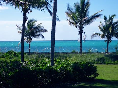 The Blue Inn Villa Freeport Bahamas