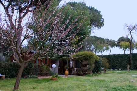Appia Antica enchanting cottage - Rom