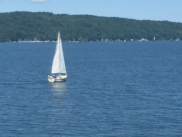 Lakefront, quiet, immaculate 1 BR - Ithaca - Pis