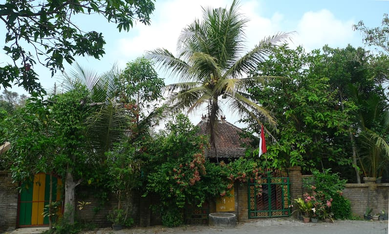 Yogya: Go local, go to Homestay Prio - Sedayu - Srub