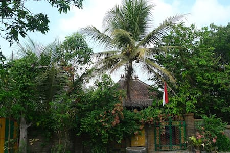 Yogya: Go local, go to Homestay Prio - Sedayu