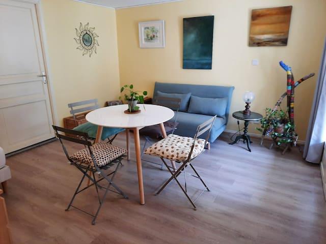 La salle à manger avec le canapé convertible un lit simple et salle de bain