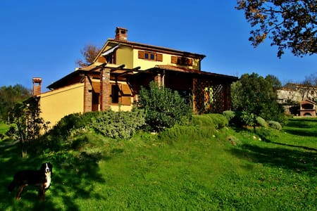 "Cozy Apartment ""Yellow"" near Rovinj - Sveti Lovreč - Appartement"