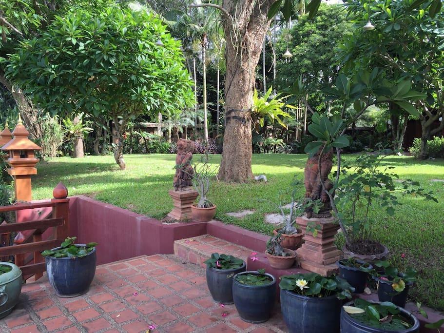 The garden with a terrace facing the river