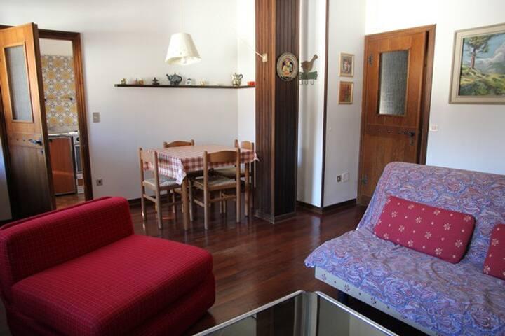 Ampio bilocale ultimo piano - Carisolo - Apartment