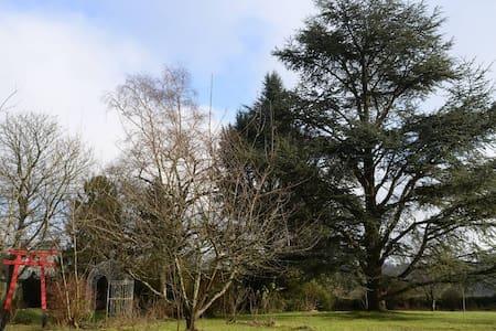 Chambre dans maison ancienne - Coucy-le-Château-Auffrique - Casa