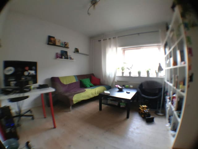 Cosy, cheap room 30min. from the Center CPH - Gentofte - Lägenhet