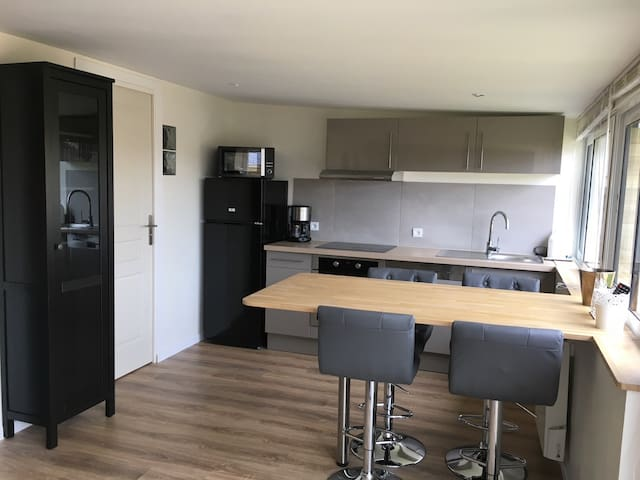 Appartement neuf avec terrasse 20m2 - Dinard - Lägenhet