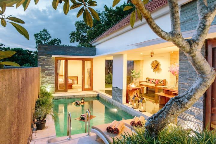 Amertha Colibri Private Two Bedroom Villa