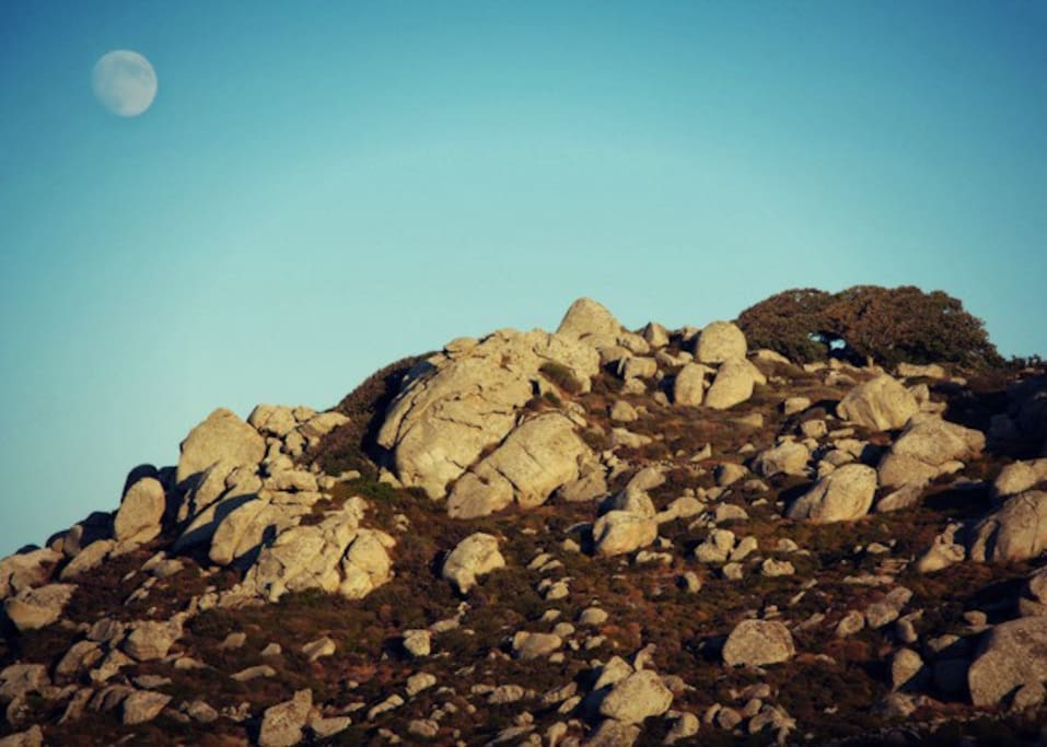 Moon landscape in the middle of Tinos
