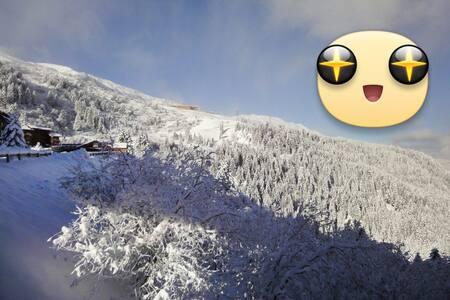 3 Pièces 55m2 refait neuf, ski aux pieds, avec vue