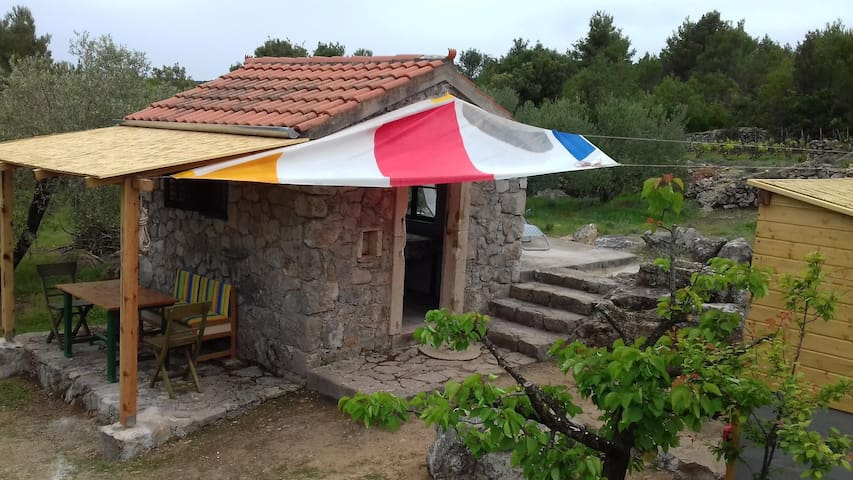 One bedroom house with terrace Pašman (K-15649)