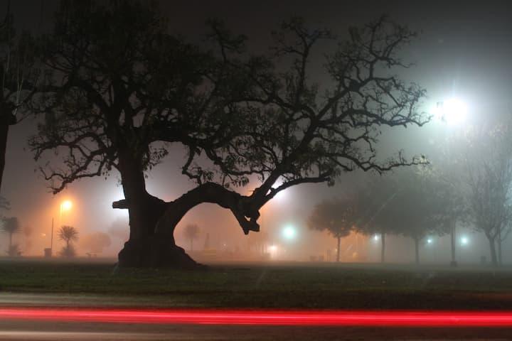 vista nocturna de plaza en City Bell
