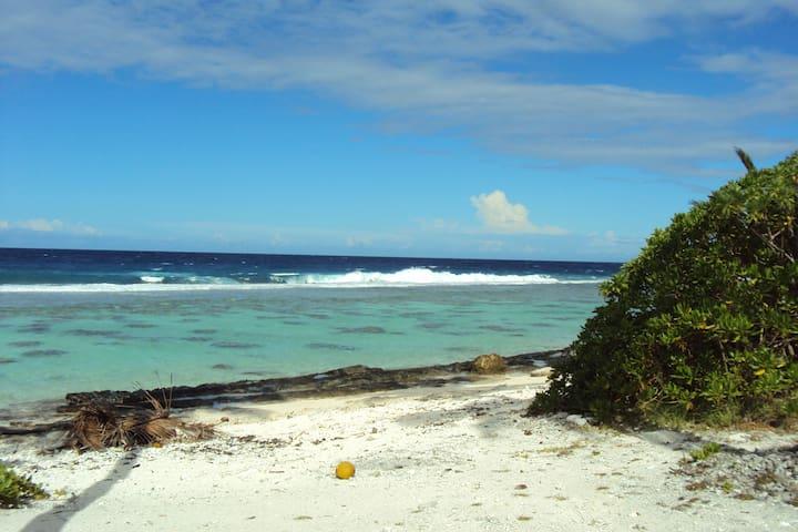 bungalow bord de mer, moorea - Moorea - Alojamento ecológico