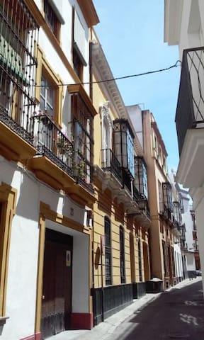 piso en el centro de Sevilla - Sevilla - Appartement