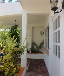 Casa de las Ranas is a charming house that has 4 studios available for rent: ROSA, LIRIO, MARGARITA and GIRASOL. Located only at 1 block from the beach. All studios are furnished and have appliances, they're ready for you to just hang your clothes in the closet. Welcome home!