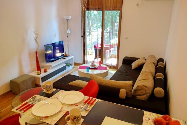 Stella Apartment 101 - Vrnjačka Banja - Apartment