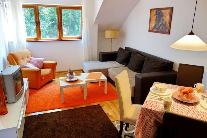 Stella Apartment 202 - Vrnjačka Banja - Leilighet