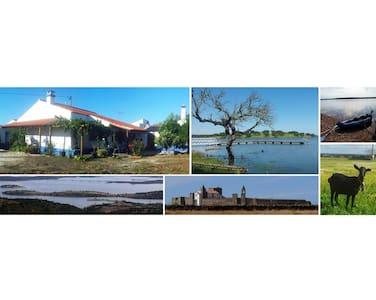 Campinho Guesthouse - Rural Tourism - Campinho