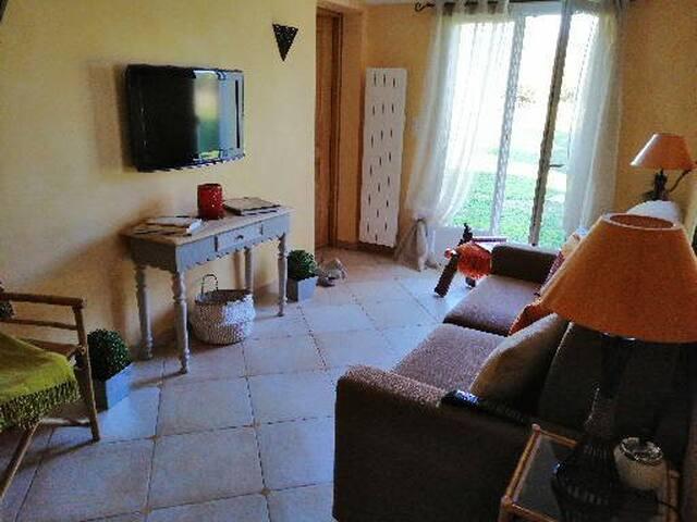 Chambre (salon) avec canapé confortable