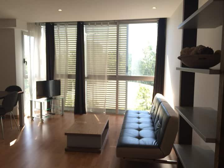 Apartamento Moderno Marron