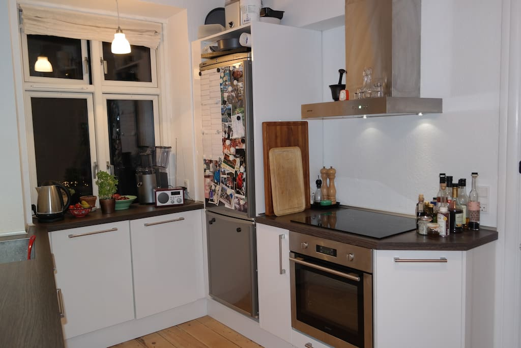 Newly established kitchen with oven, dishwasher, microwave and cooking hobs