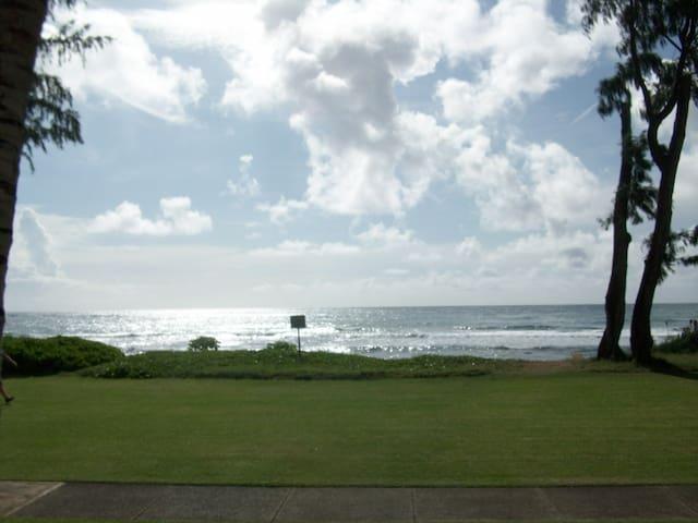 Kauai Direct Oceanfront Condo #152