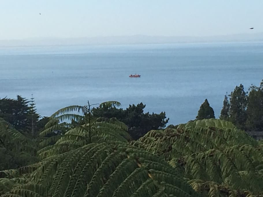 View is quiet and serene - not a lot of sea traffic -:)