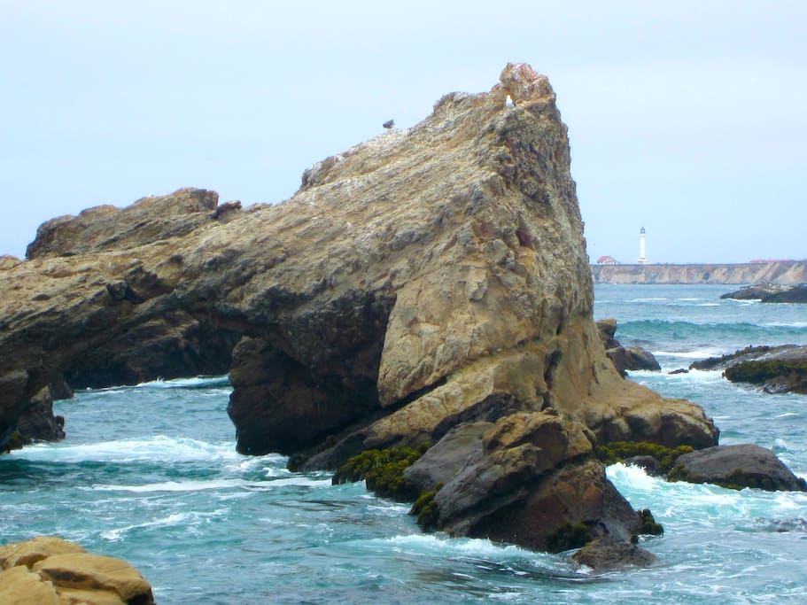 A view of the rocks off of the adjacent Point Arena-Stornetta Unit of the California Coastal National Monument.