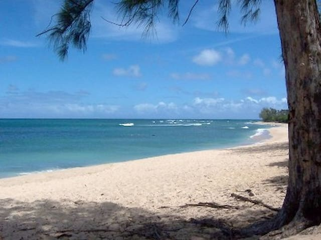 1 bdrm apt  by world famous  beach - Haleiwa - Wohnung