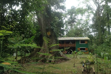 Full equpped Jungle Green House (PlayaChiquita) - Playa Chiquita  - Huis